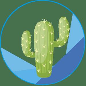 Logo Cactus Qui Web